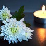 Bedeutung von Chrysanthemen
