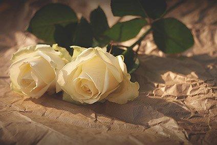 Gelbe Rose Bedeutung : blumen und kr nze die beerdigung bedeutungen und mehr ~ Whattoseeinmadrid.com Haus und Dekorationen