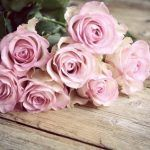 Bedeutung von rosa Rosen